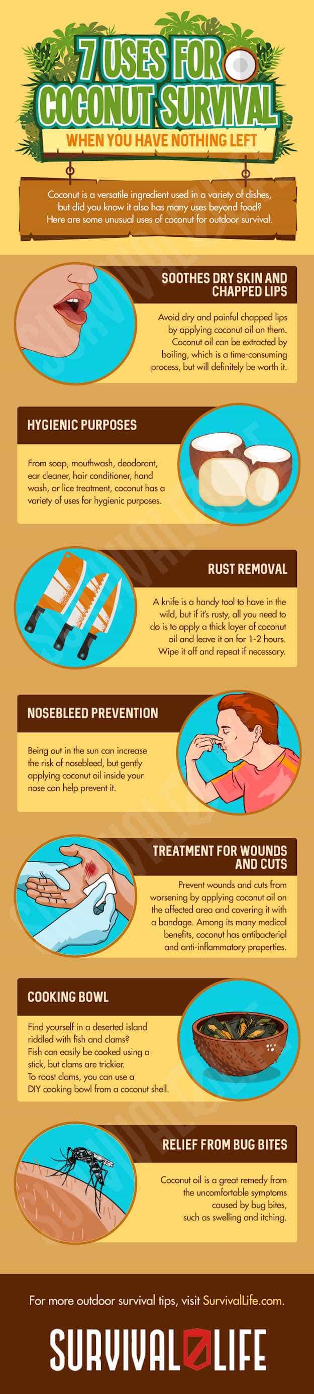 Infographic   Coconut Uses for Survival When You Have Nothing Left