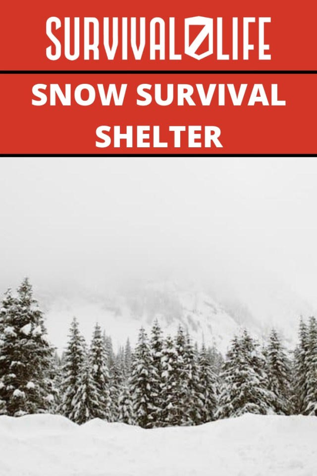 Placard | Snow Survival Shelter