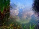 Lacul + cerul