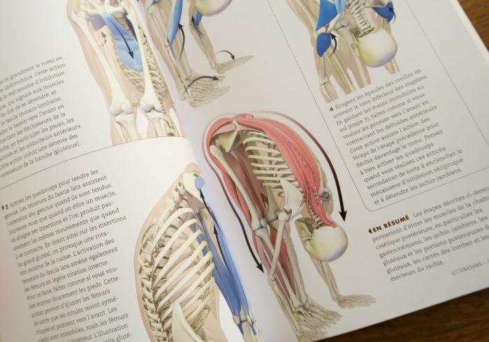 anatomie-1-sur-1-min