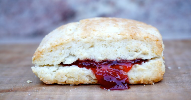 BOB….Biscuits on the Brain