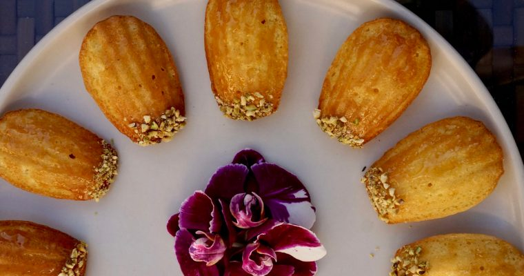 Twelve Days of Cookies Starts… NOW (Saffron, Orange and Honey Madeleines)
