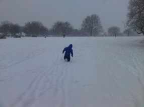 Lots of snow at Richmond Park