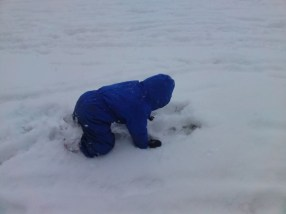 Poor Ben kept falling down holes hidden by the snow!