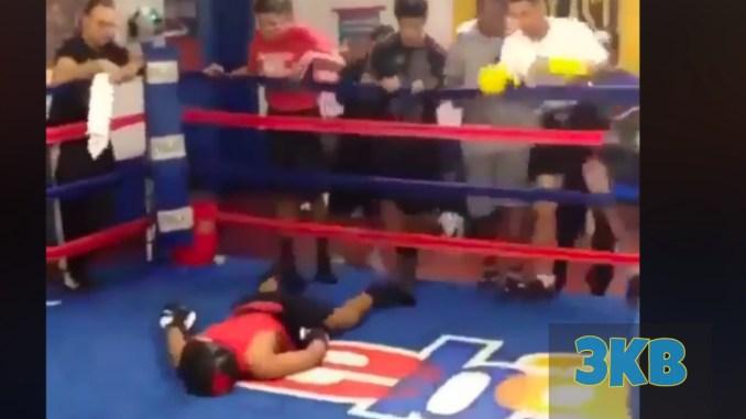 Fighter Brutally KO'd in Sparring