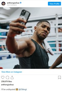 Anthony Joshua hints at undisputed match