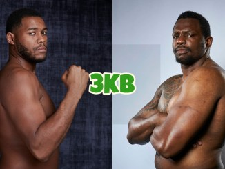 Heavyweight contenders Michael Hunter and Dillian Whyte