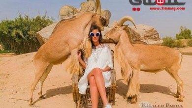 صورة الفنان المصور خالد فضة بسحر الطبيعة يتألق مع التوب موديل رغدة جمال