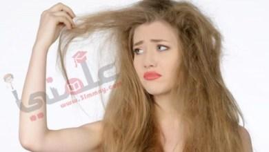 صورة مجموعة خلطات لتنعيم الشعر الخشن