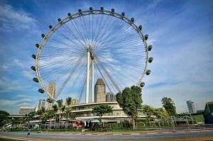 Singapore Fly photo