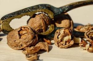 Корисні властивості грецького горіха