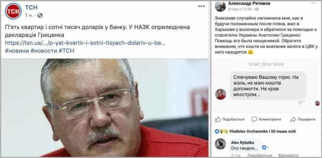Анатолій Гриценко, інформація про доходи