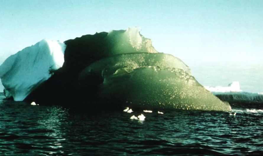 Зелені айсберги Антарктиди – більше, ніж примхи Південного океану