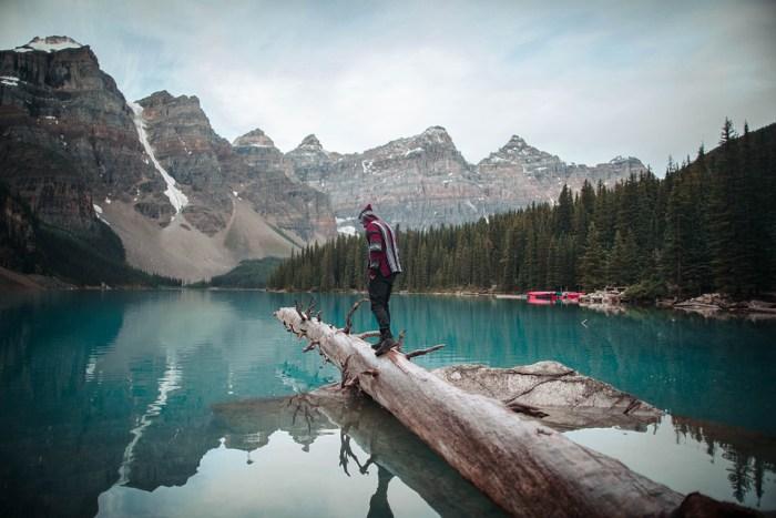 канада ліс