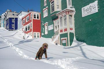 У Канаді рекордний снігопад паралізував життя кількох міст