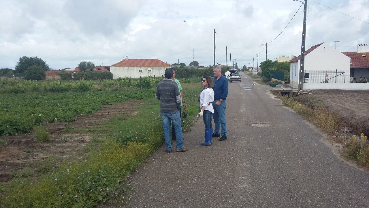 3 Point Potatoes Import Werkoverleg Portugal