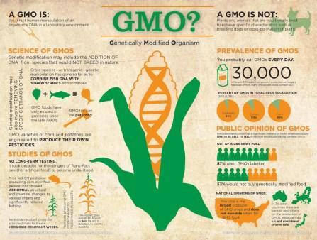 GMOs Infographic 2