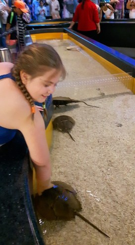 Petting the sting rays. She waiting the whole day to do this.