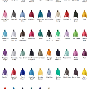 25 x Hoodies With A 1 Colour Screen Print