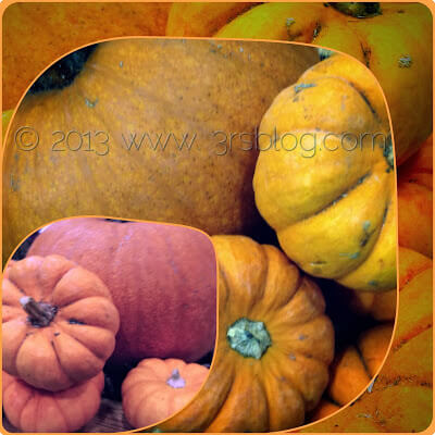 WW: Gourds Gone Wild!