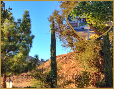 WW: Autumn in the San Fernando Valley…