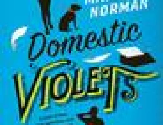 Book Talk: *Domestic Violets*, by Matthew Norman