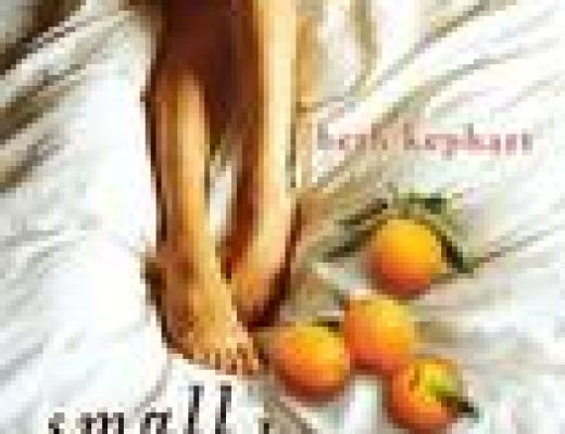 Book Talk: *Small Damages*, by Beth Kephart