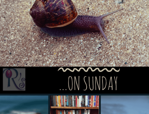 Sunday Slowdown…with an extra slow day