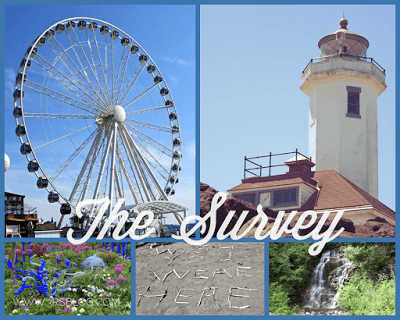 The Survey–Reading on Borrowed Time; or, Getting Reacquainted With the Library