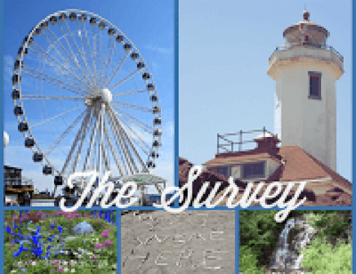 The Survey: Show and Tell, Sunday 9/20/2015