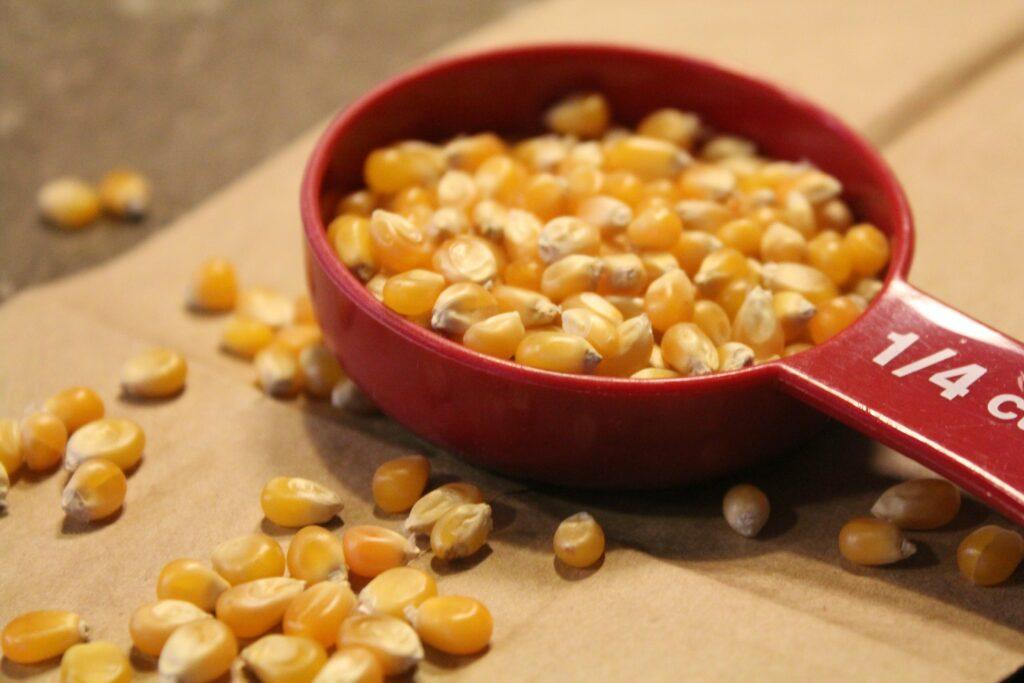 Brown Bag Popcorn: 3ten.ca