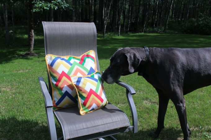 Piping and Zipper Outdoor Pillow: 3ten.ca