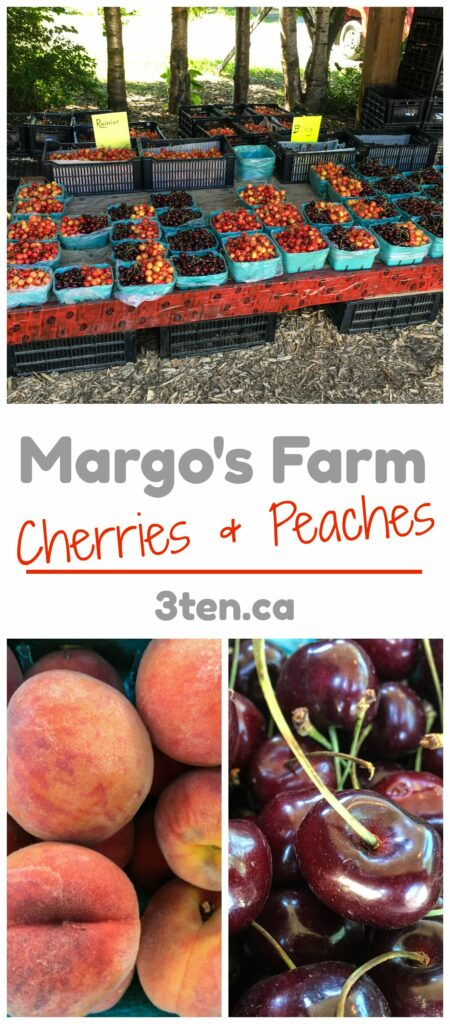Margo's Farm: 3ten.ca