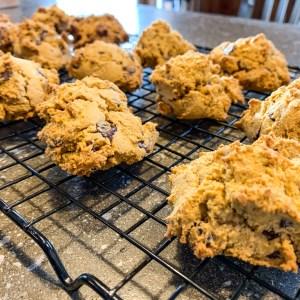 Pumpkin Bread Cookies:3ten.ca