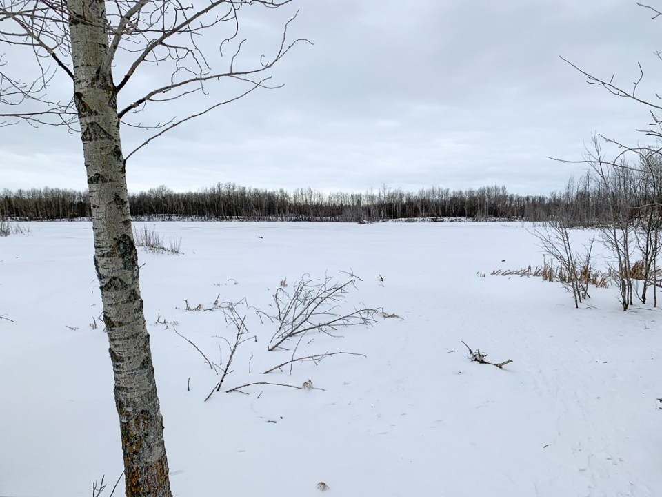 Elk Island Winter Hike: 3ten.ca
