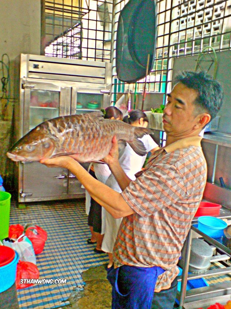 Empurau Fish
