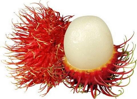lychee, longan, and mamoncillo