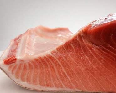 tuna fats