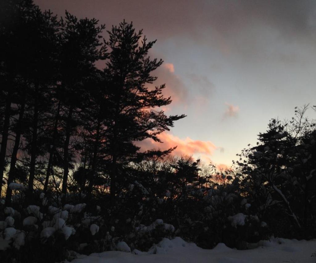 Photo 2013-12-22 16 31 34