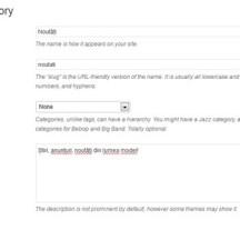 Tips & Tricks: eliminarea paragrafului din descrierea categoriilor