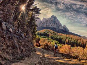 Mountain biking camps Stellenbosch jonkershoek