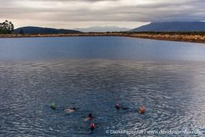 Open water swim 9 December