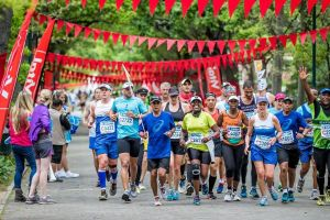Cape town marathon coaching