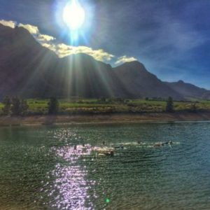 Boschendal open water swim