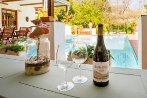 Stellenbosch villa