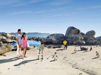 West-Coast-Way-Boulders-Beach
