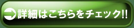 check2-5 - コピー