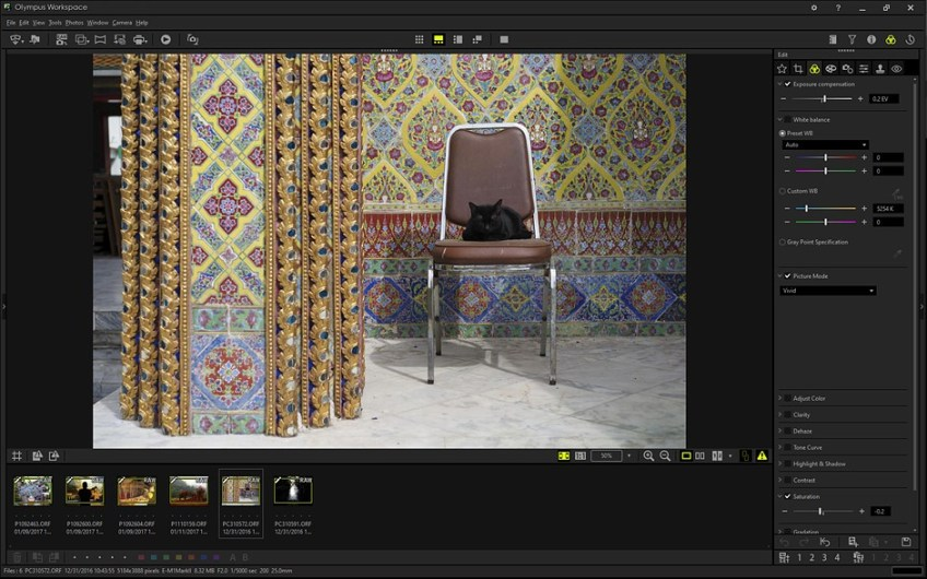 Adobe Camera Raw vs. Olympus Workspace: Which app should you use?