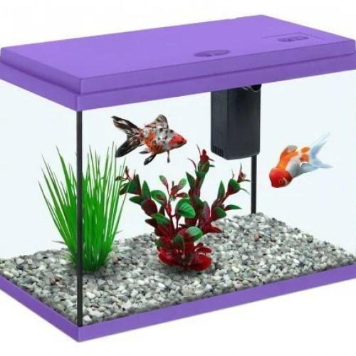 Aquarium Fish Tank at Rs 3600/piece(s) | Fish Tanks | ID: 12494172788