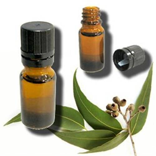 Get Fresh Cosmetics Wholesale
